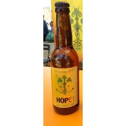 HOPe Citric.12 x 33cl